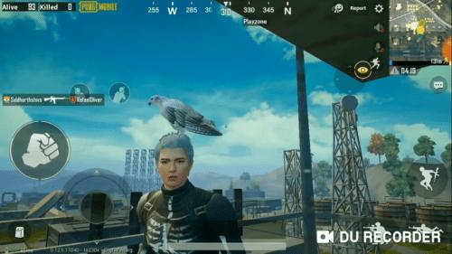 8 Lokasi Burung Falcon Pada Game PUBG Mobile Terbaru
