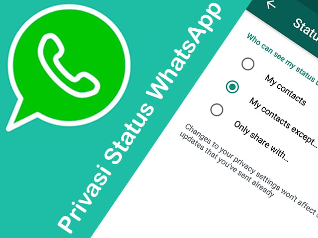 Cara Melihat Status WhatsApp Disembunyikan