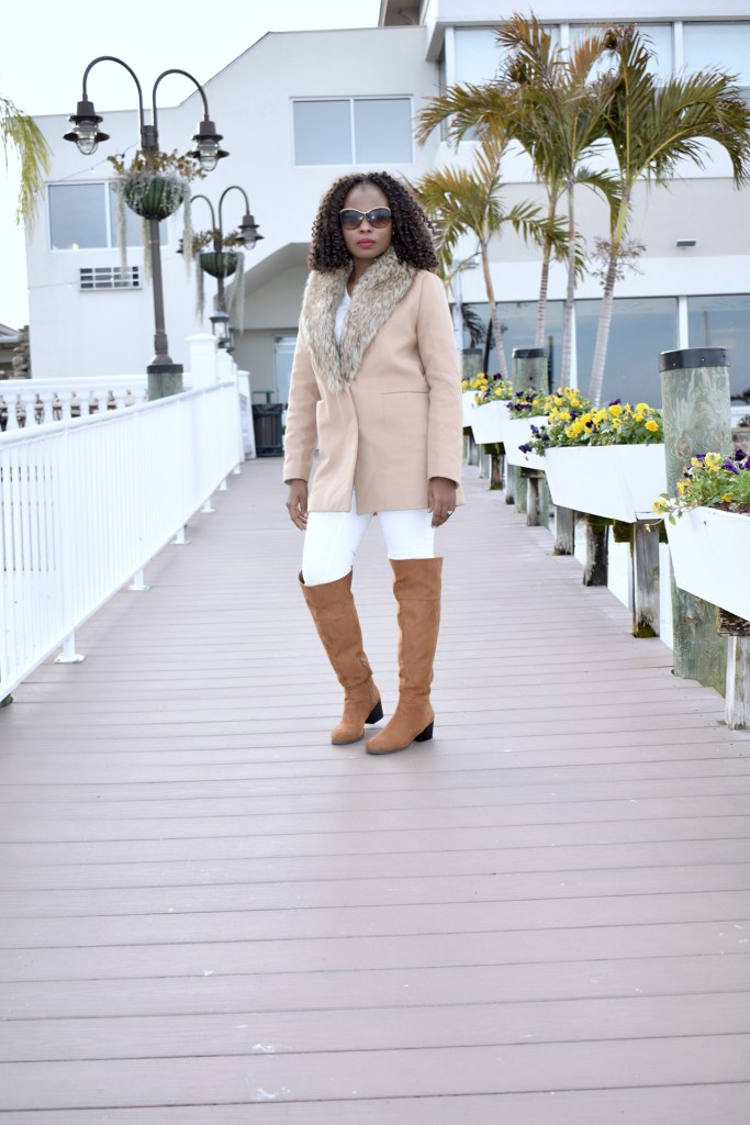 Neutrals for fall graphic