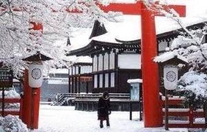 dojo_winter
