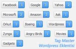 wordpress tag master etiket eklentisi