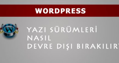 wordpress disable revision