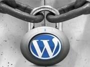 wordpress bot saldırısı