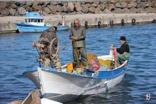 Giresun'da Geleneksel Kıyı Balıkçılarına Destekleme Ödemesi Yapıldı