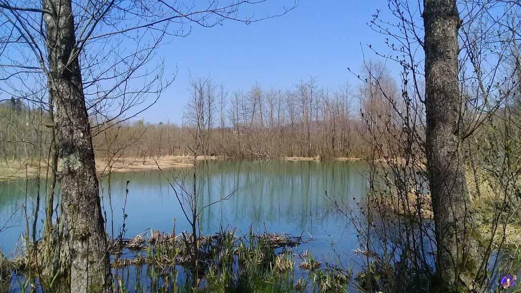 Kuşluhan Köyü Ördek Gölü Gerçek Hikayesi