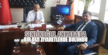 Şenlikoğlu, Ankara'da bir dizi ziyaretlerde bulundu
