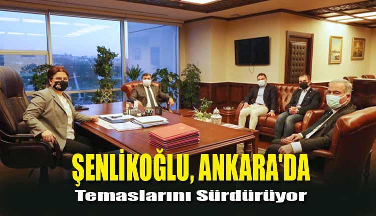 Şenlikoğlu, Ankara'da Temaslarını Sürdürüyor