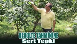 Fındıkta Rekolte Tahminine Sert Tepki…