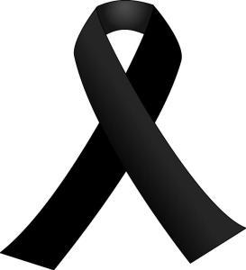 """САЩ обявиха четиридневен траур, а националните знамена са свалени наполовина, заради трагедията в щата Кънектикът, където бяха убити 26 души, включително 20 деца, от 20-годишен олигофрен при пореден инцидент със стрелба в американско училище. Тялото на 20-годишния убиец  Адам Ланза беше намерено в сградата на училището. До него са открити 9-милиметров """"Глог"""" и втори пистолет """"Зиг Зауер"""". В автомобила си е имал и автомат """"Бушмастър"""", въпреки възрастта на убиеца и контролът, който властите декларират, че осъщестяват. Майката на убиеца, загинала също от неговите куршуми, сама го е учила да стреля.  Всичките оръжия са законни. Статистика на Си Ен Ен сочи, че над 45% от американските домакинства притежават над 270 млн. лични оръжия, което превръща Америка в най-въоръжената нация в света. Американската конституция си остава непроменена от над 200 години, като Втората поправка в нея гарантира сигурността на свободната страна, защитавайки правото на обикновенния гражданин да притежава оръжие."""