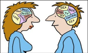 male_and_female_brains