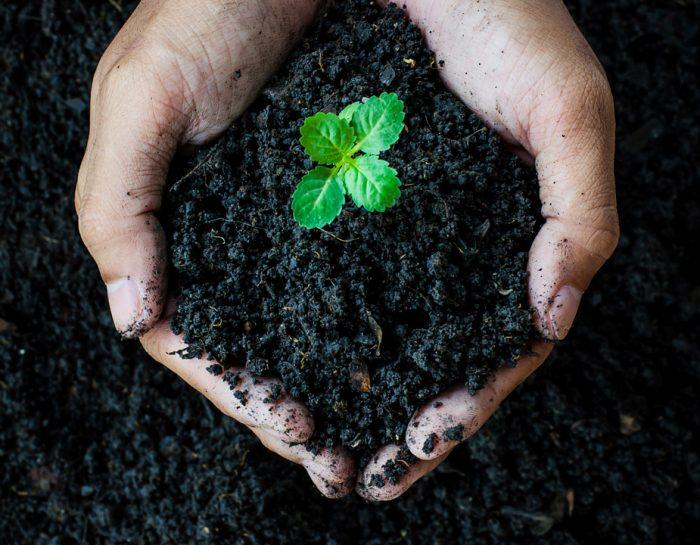 Инвестирай в компост