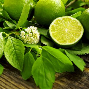 Citrons-verts-.jpg