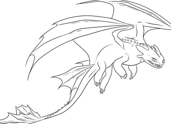 awesome night fury drawing in how to train your dragon coloring
