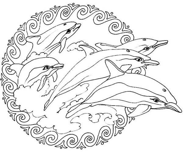 animal flippers jumping from the sea mandala animal coloring pages