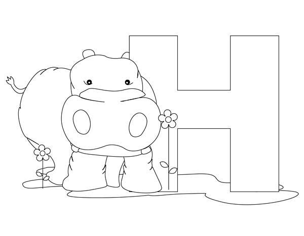 hippo coloring page coloring page here home narwhal cute baby