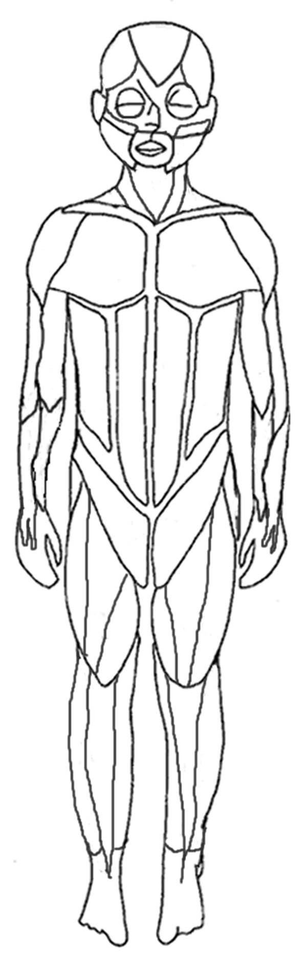 human anatomy human muscles coloring pages bulk color