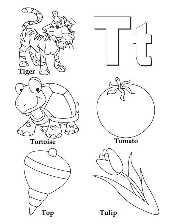 things comes with letter t coloring page bulk color - Letter T Coloring Pages