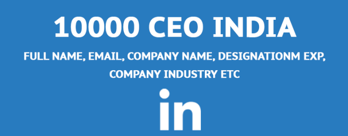 CEO database of Indian companies