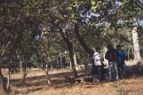 bulleteers-madha-kho-4960
