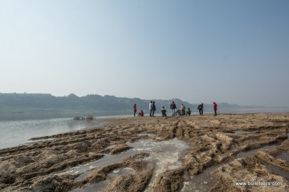 A criss cross of tyre tracks in sand on the banks of river chambal