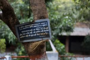 words of wisdom at kanher jhiri