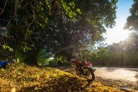 rider-mania-2015-7462