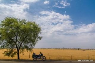 shivpuri-baran-jhalawar-2169