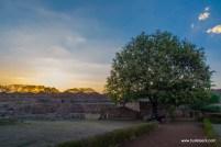 surwaya-shivpuri-2073