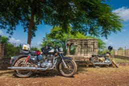 kadwaya-ashoknagar-00717