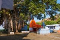 bhanpura-gandhi-sagar-01676