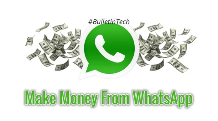 how to make money from whatsapp