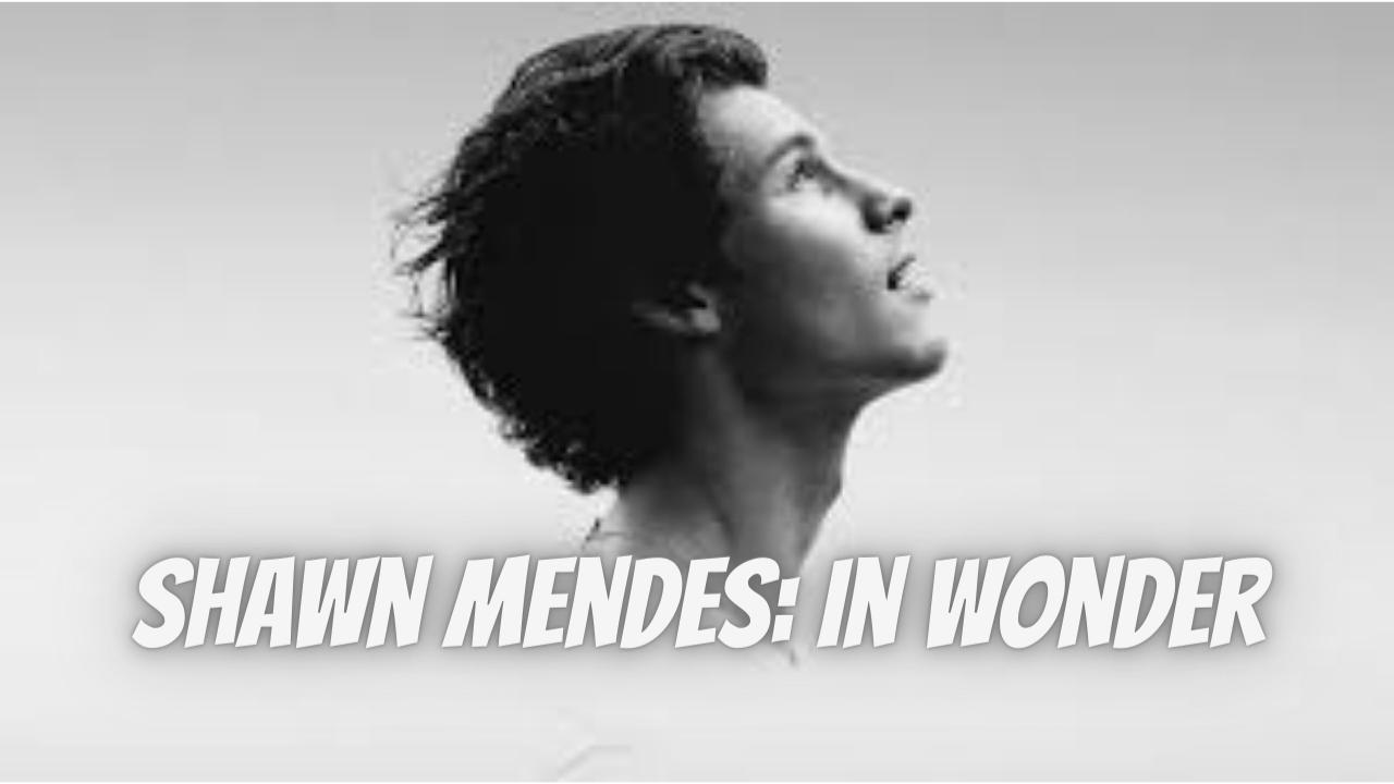 Shawn Mendes In Wonder