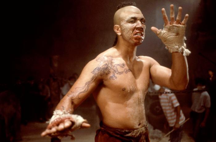 Michel Qissi kickboxer vengeance