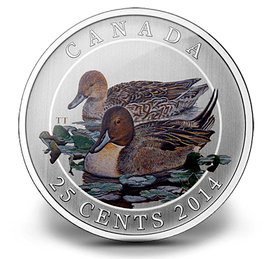 2014 - 25 Cent Colored Coin - Ducks of Canada - Pintail