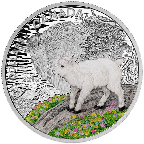 2015 - $20 1 oz. Fine Silver Coloured Coin - Baby Animals : Mountain Goat