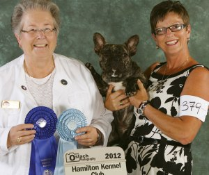 Finn wins Group 1st and Best Puppy in Show