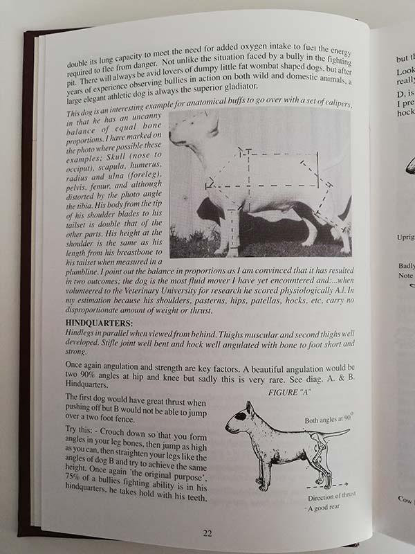pagina del The Second Australian Bull Terrier Book