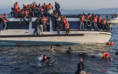 Les migrations européennes au 20éme siècle, la nouvelle exposition à découvrir en janvier dans votre BU !