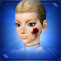 レッドローズメイク Red Rose Makeup