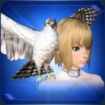 羽ばたく白鷹 Flapping White Falcon