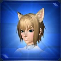 きつね耳B Fox Ears B