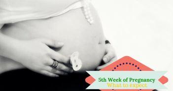 5 weeks pregnant