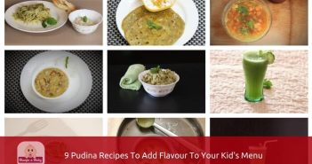 pudina recipes intro pic