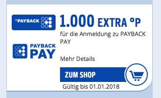 payback ecoupon pay 1000 punkte bonus extra meilen