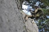Fokussierter Blick: Eine Soldatin seilt sich von einer Felswand ab.