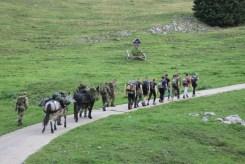 Der Bergmarsch auf das Dürrnbachhorn stellte einen Höhepunkt der Truppenbesuchstage dar. Die Teilnehmer wurden zeitweise von zwei Maultieren begleitet.