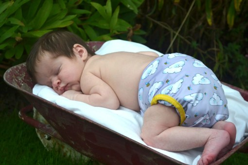 Newborn baby asleep on a blanket in a wheelbarrow, wearing nothing but a reusable nappy with a bee print