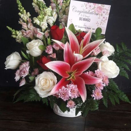 WhatsApp Image 2017-12-24 at 10.52.45