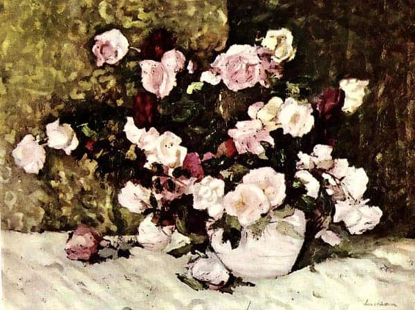 5 - Trandafiri_Roses
