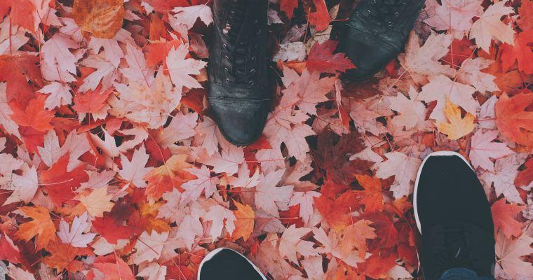 〇〇の秋(あき)